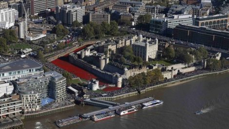 _78684835_tower_poppies_reuters