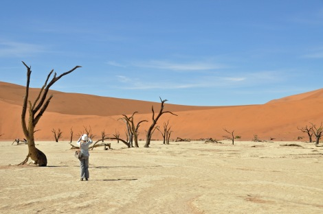 Dead Vlei...a dried up sea where even bacteria doesn't survive