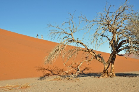 The dunes at Sossusvlei...