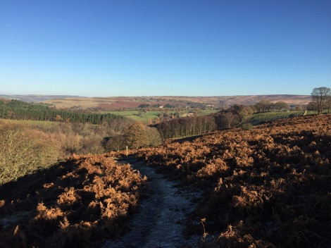 The North Yorks Moors
